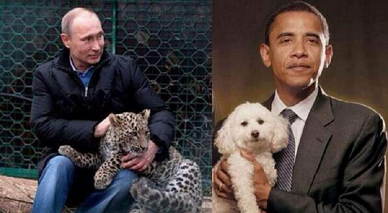 wpid-1406901967_Putin-v-Obama-Russian-deputy-prime-minister-mocks-president-with-catty-pictures-on-Twitter
