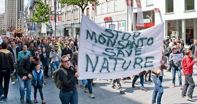 Патенты корпорации Monsanto на ГМО оспариваются в суде