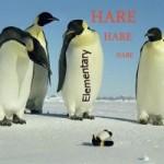 """Попали под """"Пингвин""""? - мы идем к вам!"""