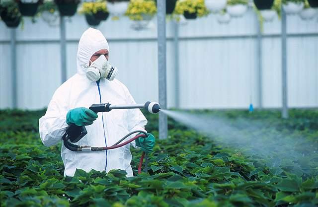 Связь пестицидов с онкологическими заболеваниями