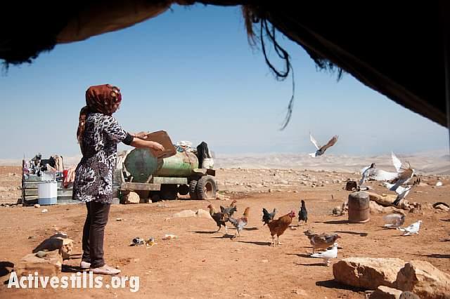 003-20131015-palestine-0983