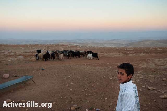 006-20131015-palestine-1148