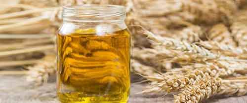 01-Wheat_Germ_Oil
