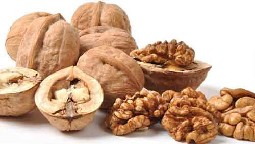 Польза и вред грецких орехов