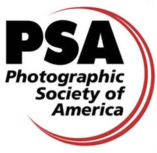Новая ступень развития PSA