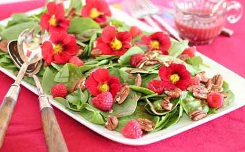 Сила съедобных цветов против хронических заболеваний