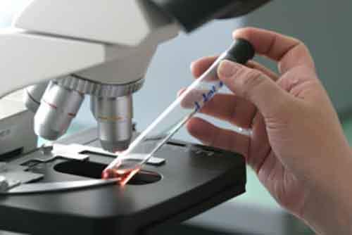 Обнаружили пробирки с возбудителями опасных заболеваний в США