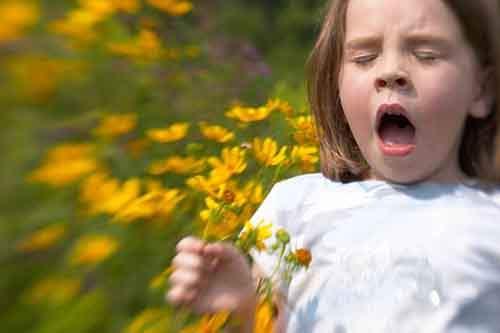 Аллергия. Неизвестная сторона огромной проблемы