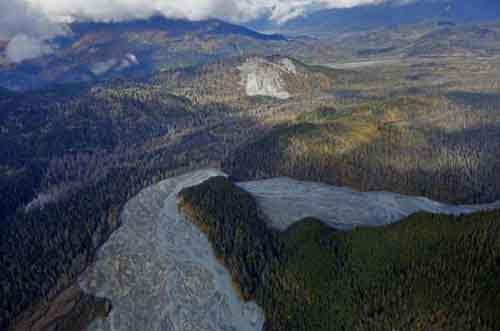 С высоты птичьего полёта видно, как река Цирку пробивает себе путь сквозь густые леса вблизи Хейнса на юго-западе Аляски, 7 октября 2014