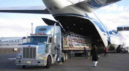 Быстрая и качественная доставка из США