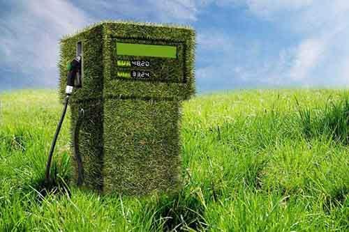 Все что нужно знать о биотопливе