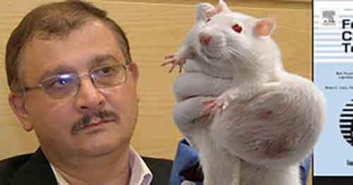 Учёный, обнаруживший, что ГМО вызывают опухоли у крыс, выиграл судебный иск о защите своей репутации - MixedNews.ru