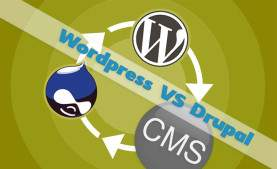 Drupal против WordPress – выберите лучшую CMS для Вашего бизнеса