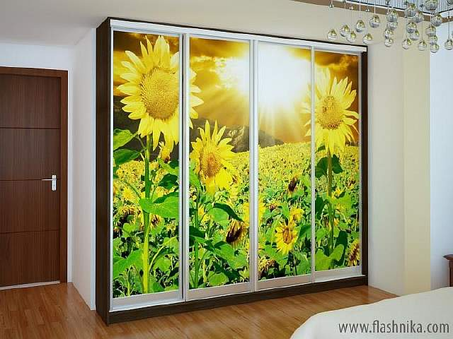 th2_shkaf_kupe_nika_15_dveri_fotopechat_50dd5d79863de