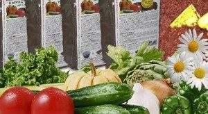Семена цветов и овощей от «Дома Семян» востребованы на любительском и профессиональном рынке