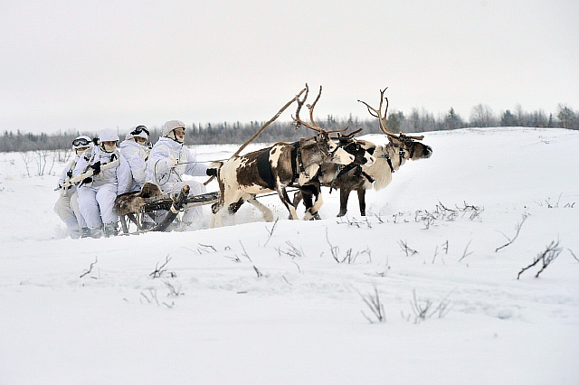 russia-still-uses-animal-transports-like-reindeer-seen-below-for-certain-kinds-of-missions-in-the-arctic