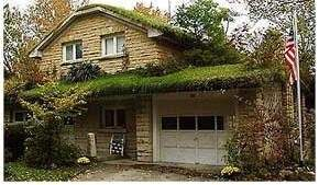 Как озеленить крышу?