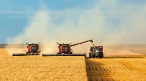 Российское сельское хозяйство: стратегическое значение биотехнологий