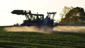 Благодаря рекордным объёмам производства продовольствия в России его экспорт может достигнуть 40 миллиардов долларов