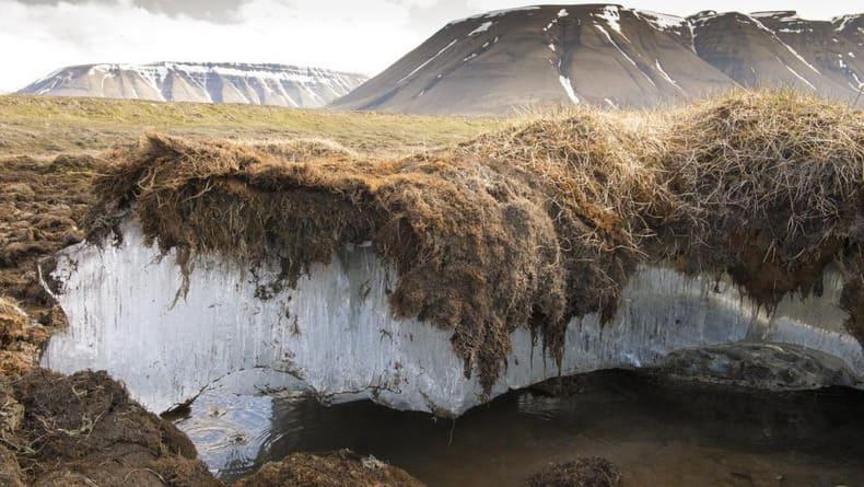 Haaretz: Глобальное потепление окажется для России благословением
