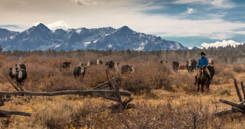 4-13-20-ranch.jpg