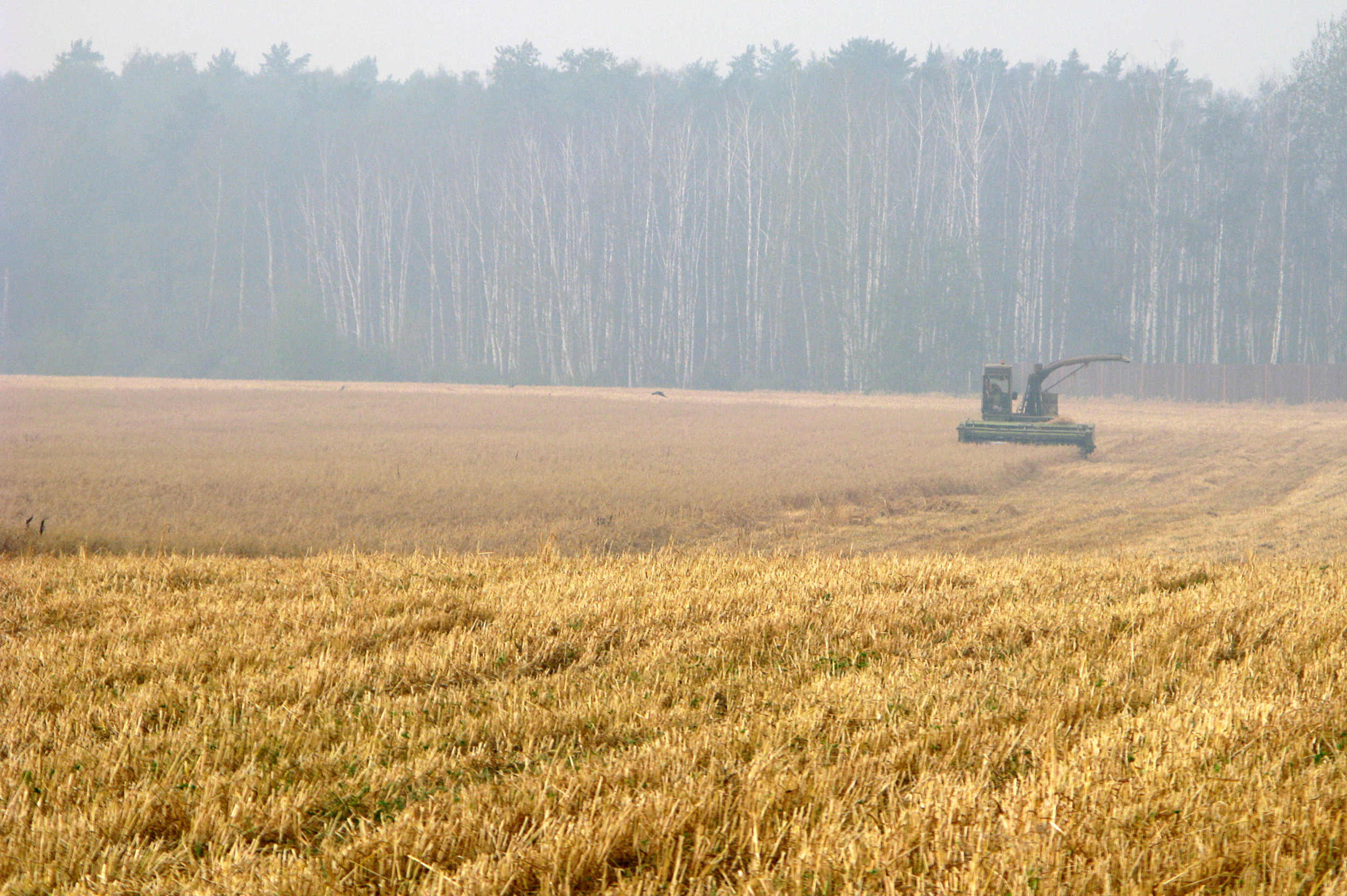 Зерно может стать следующим фронтом в торговой войне