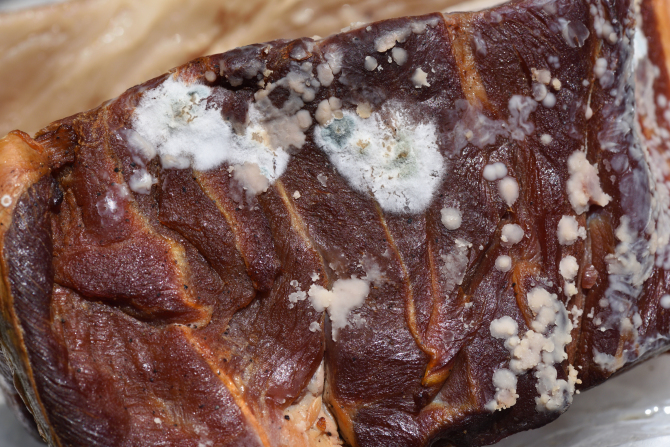 Соцсети продвигают странную привычку — поедать ради кайфа тухлое сырое мясо