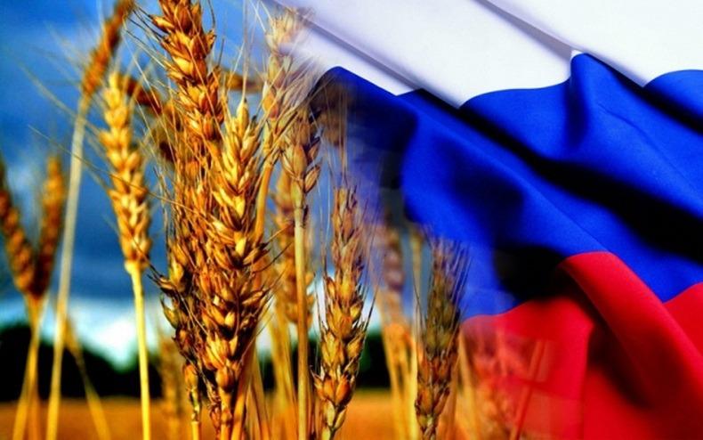 Продовольственное импортозамещение в России: провал или прорыв?
