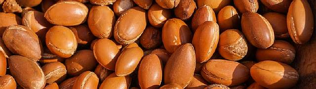 Аргановые зерна
